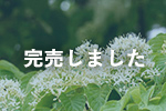 岩手県産ミズキと里の花蜂蜜