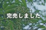 北海道産シコロ(キハダ)蜂蜜