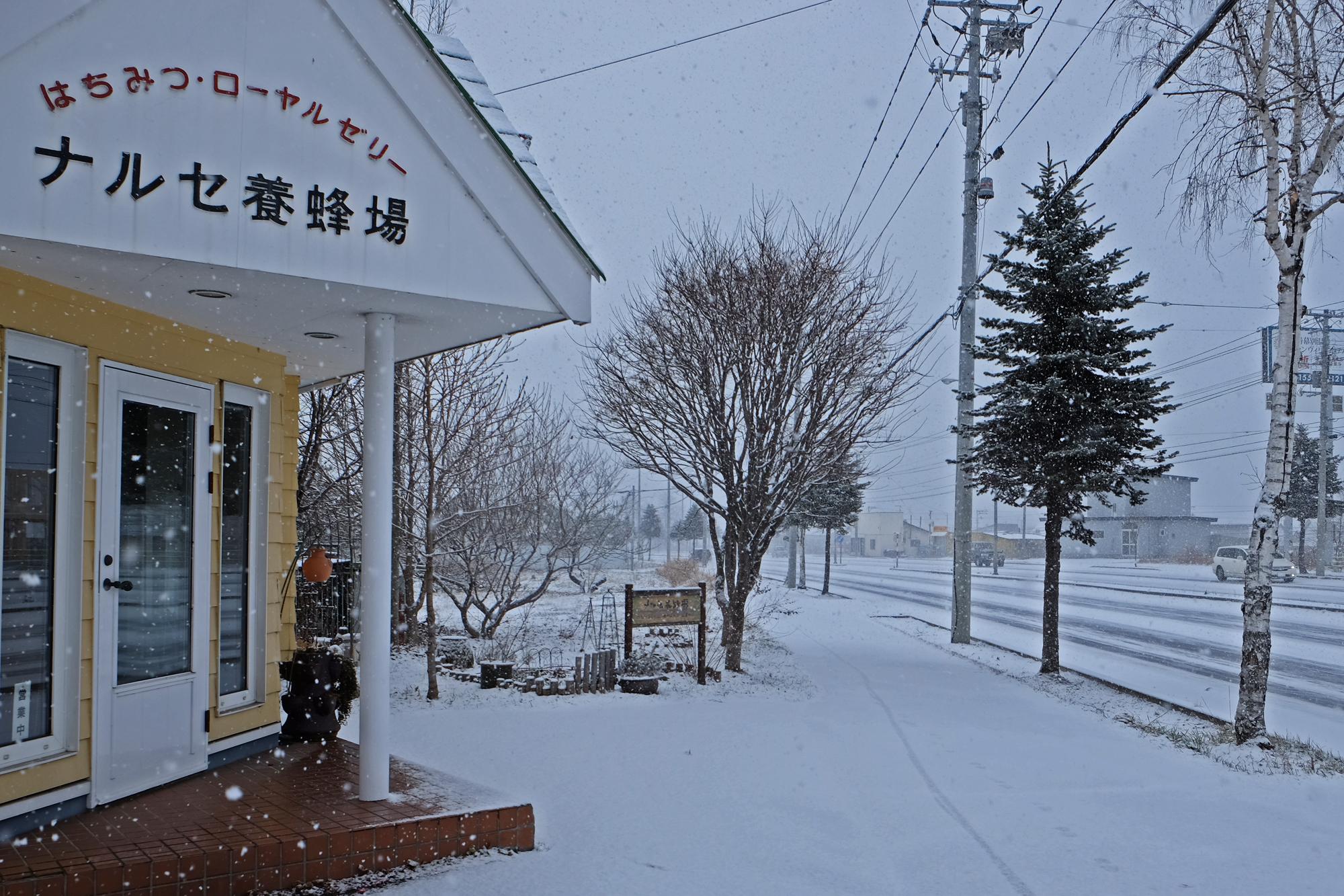 降雪 北海道十勝