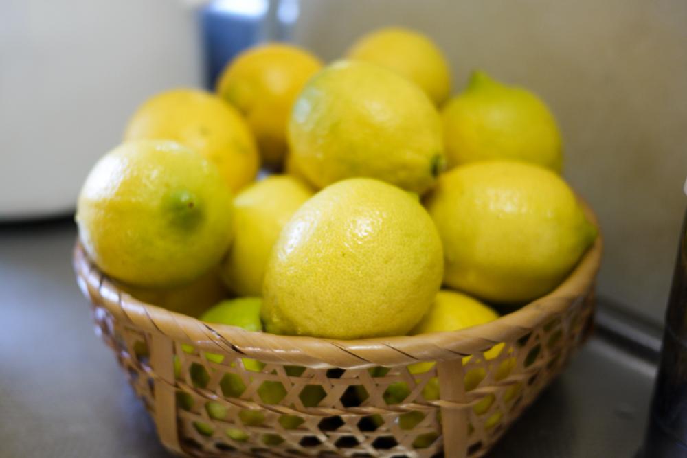 レモンが届きました!
